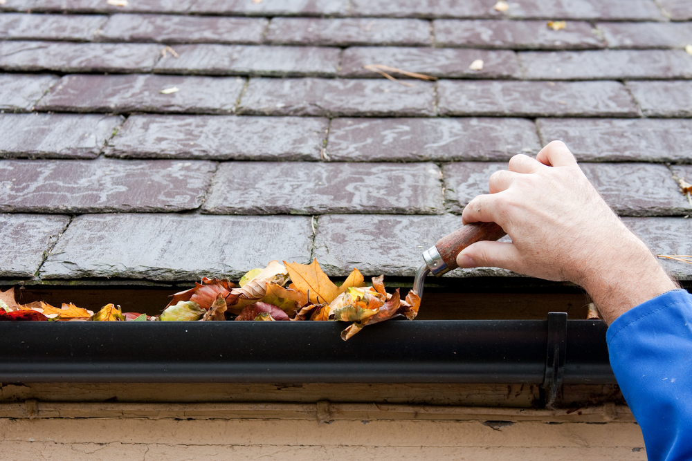 Gutter cleaning costs - leaves in the gutter