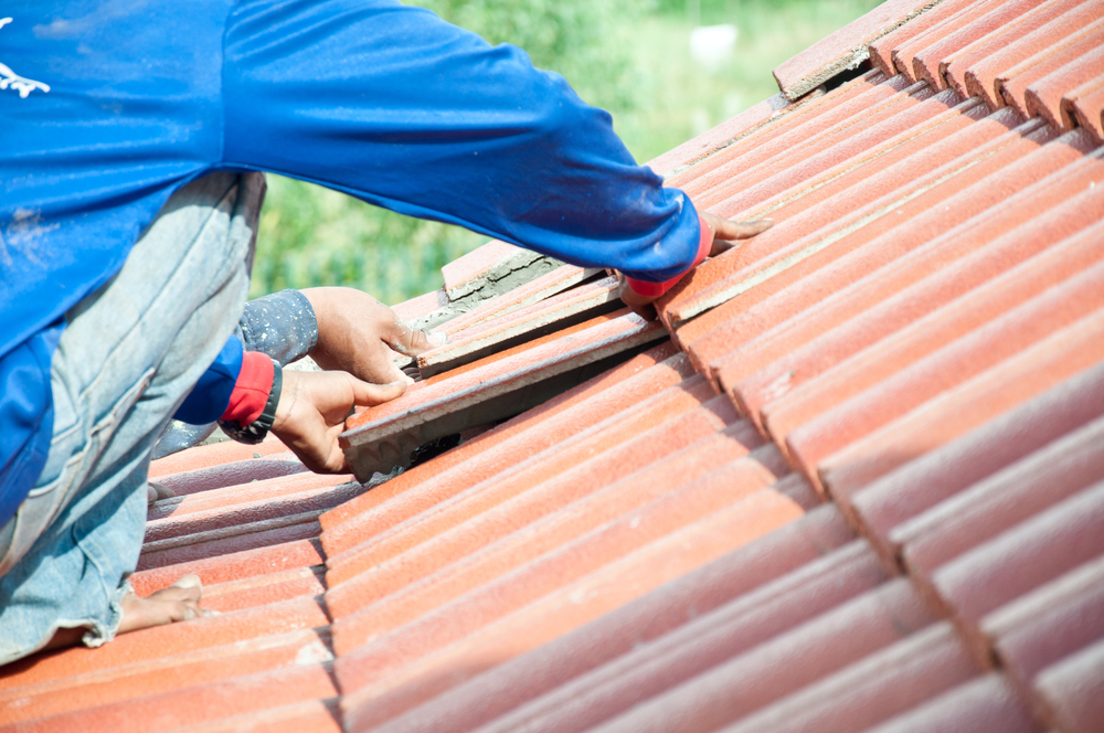 how to check your roof