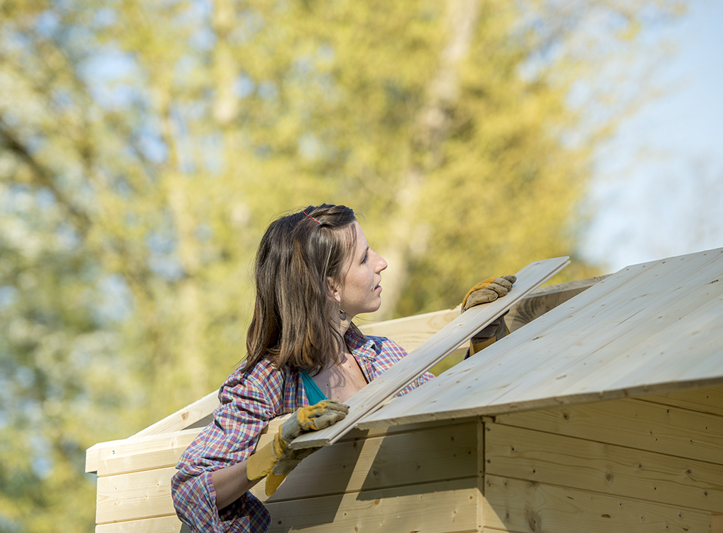 Building a shed roof