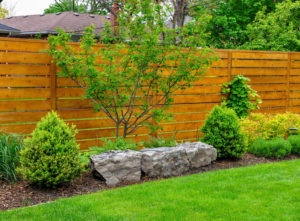 cost of shrubs for landscaping