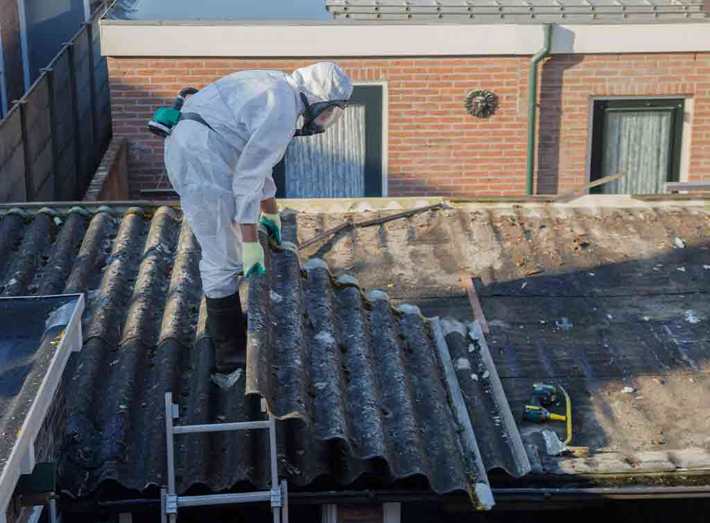 Asbestos shed removal cost