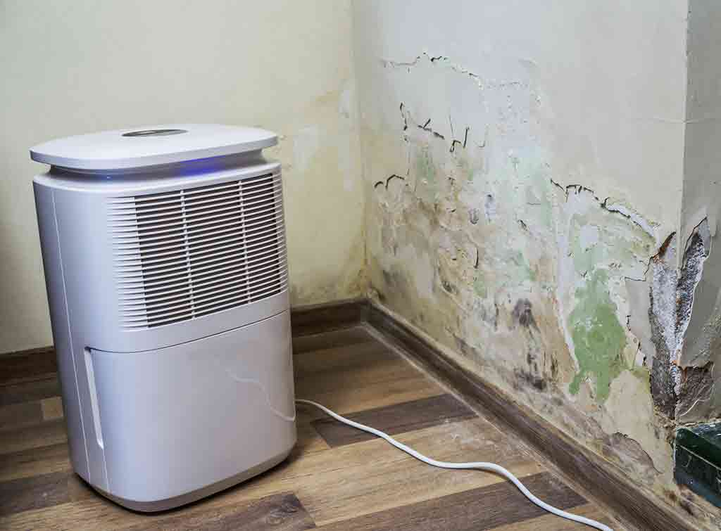 cost to hire a dehumidifier