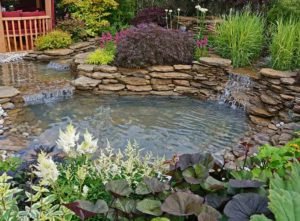 Soothing pond rockery