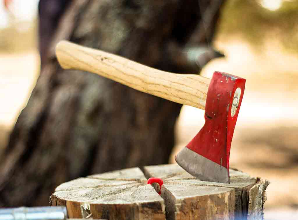 Axe for tree stump removal