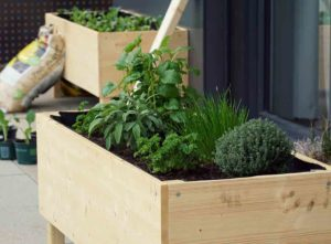 How to build a raised garden bed blog